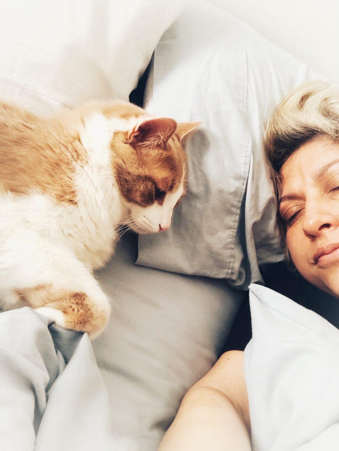 dublin el gato y angelica rodriguez peña profesion viajera marketing digital